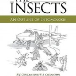 The Insects An Outline of Entomology (5th Edition)